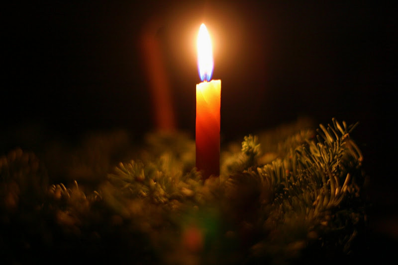 Candle in evergreen bough